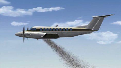 El «bombardeo» de semillas podría ayudar a disminuir desforestación
