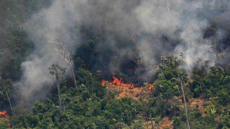 Brasil desplegó 44 mil militares en 6 estados amazónicos para sofocar las llamas