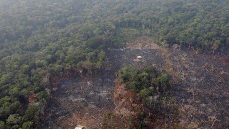 Irlanda y Francia bloquearán acuerdo con Mercosur si Brasil no protege la Amazonía
