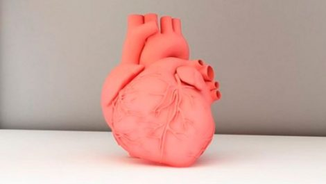 Científicos logran imprimir en 3D partes del corazón en colágeno