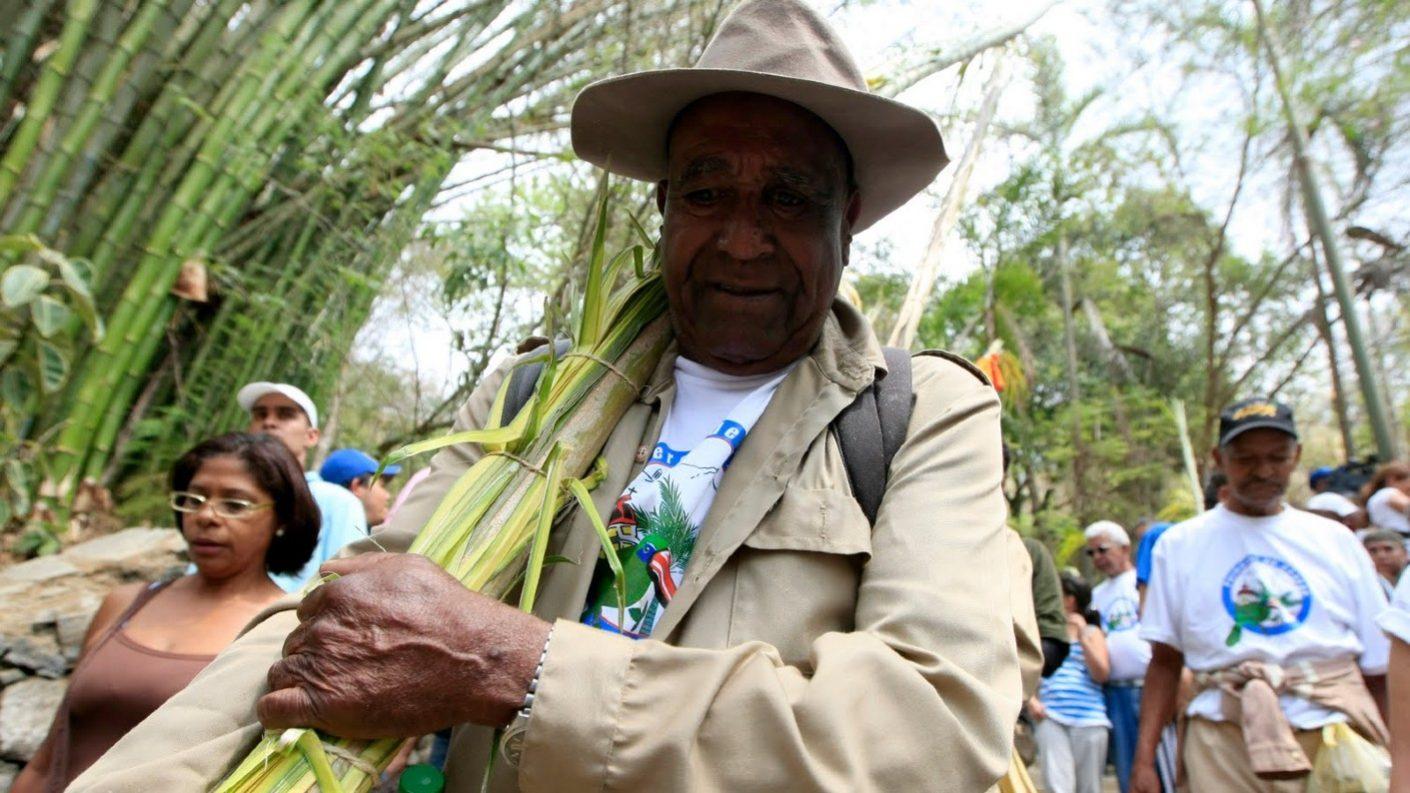 Palmeros de Chacao son declarados por la Unesco Patrimonio Cultural de la Humanidad