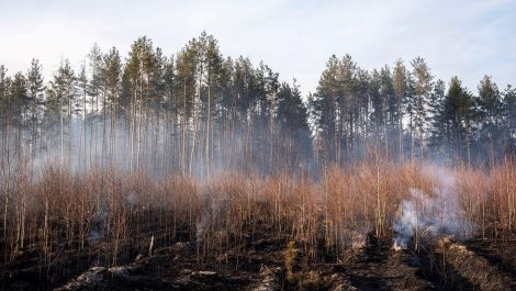 Ucrania asegura que incendio cerca de planta de Chernóbil fue apagado