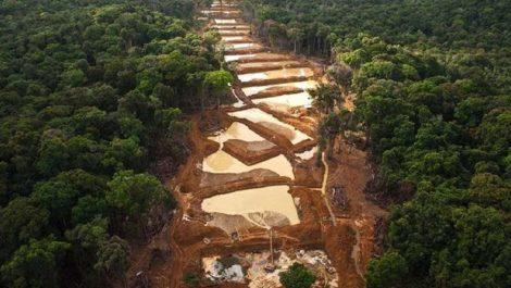 ONU: el Arco Minero está controlado por delincuentes organizados