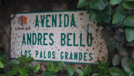 Un fallecido por explosión de bombona en la Avenida Andrés Bello