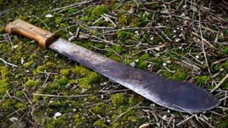 Pareja atacada a machetazos en el Sur del Lago