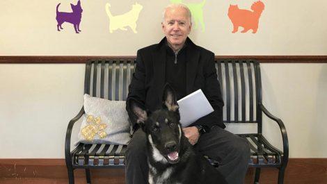 Biden se fractura el pie al jugar con uno de sus perros