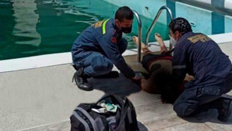 Hallaron un cadáver en el complejo de piscinas de la UCV